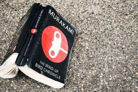 The Wind Up Bird Chronicles Haruki Murakami book review japanese literature paperbacksocial Noma Bar design